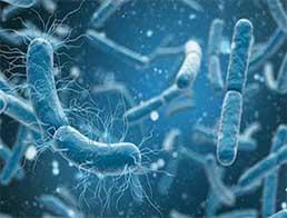 Новий клас антибіотиків широкого спектра