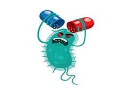 Антибіотикорезистентність: порівняння різних стратегій антибіотикотерапії